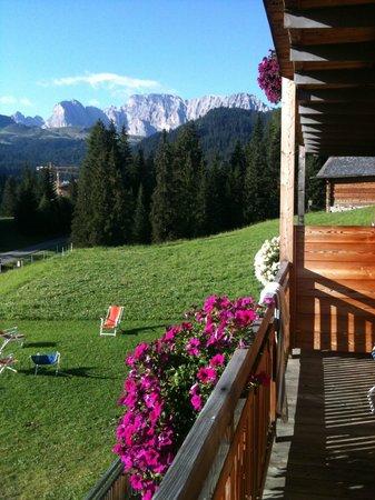 Hotel Saltria - true alpine living: tanto verde intorno