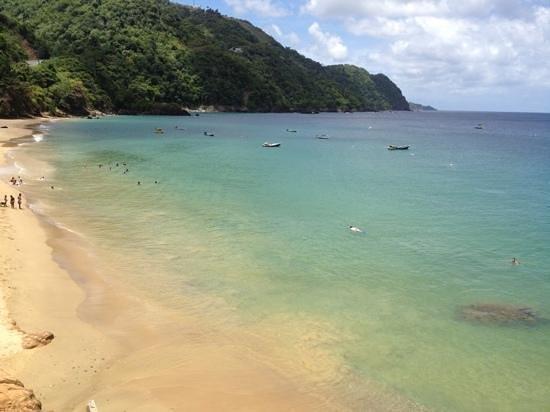 Castara Bay: heaven