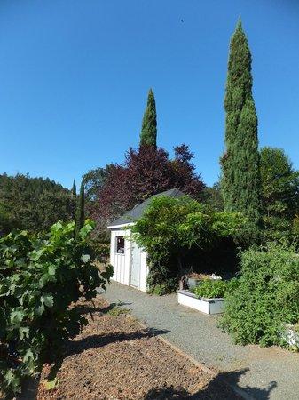 Chateau de Vie : Garden