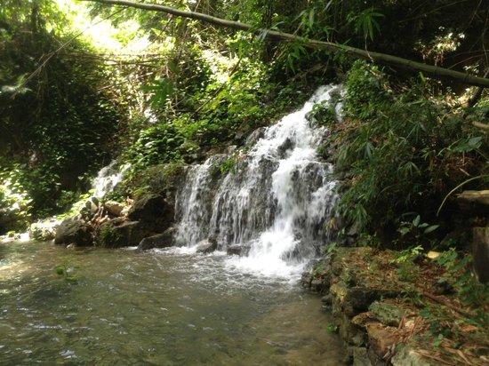 Chukka Caribbean Adventures: One of the waterfalls