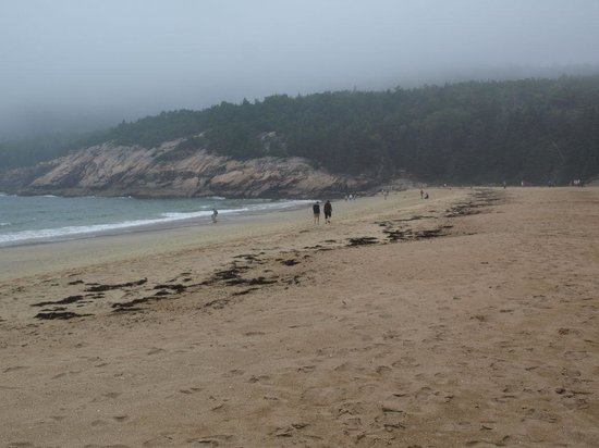 Bar Harbor Campground: Sand Beach @ Nearby Acadia National Park