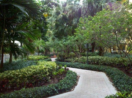 Wyndham Sea Gardens: Gardens between buildings