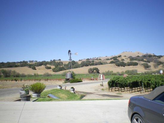 Zaca Mesa Winery: old windmill