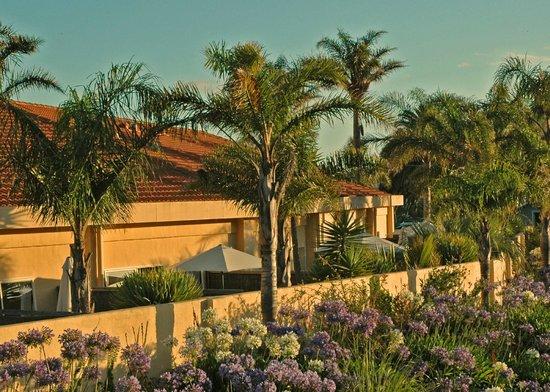 Ocean Beach Motor Lodge : Courtyards