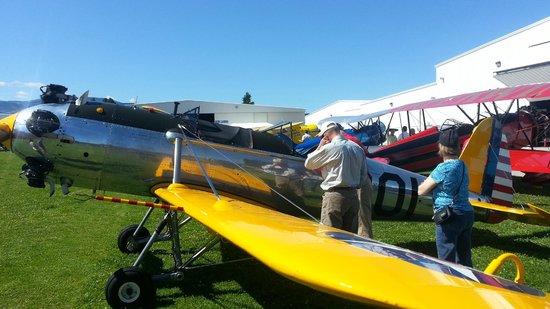 Western Antique Aeroplane & Automobile Museum: 1942 Ryan PT-22
