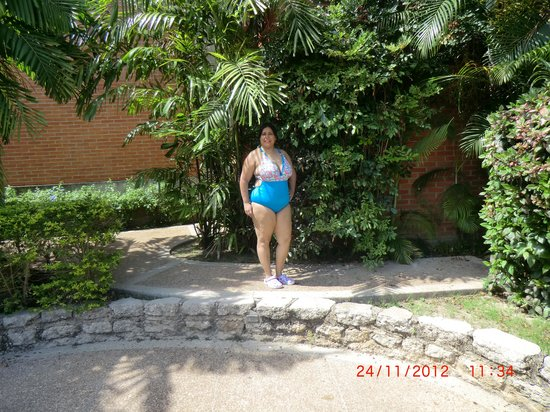GH Guaparo Inn: Bellos jardines
