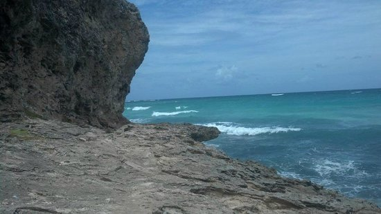 Ocean Bliss Apartments: bARBADOS ROCKS