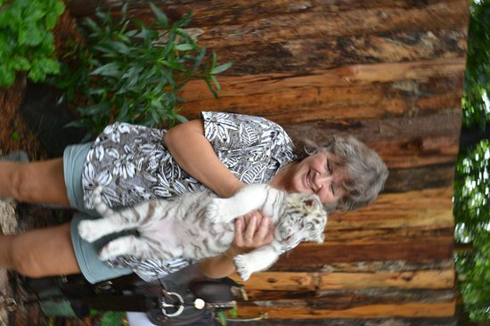 Dade City's WIld Things : We could not hold Remington the second visit, he was too big !