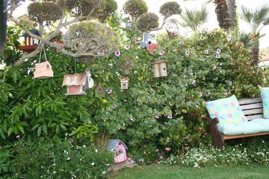 Seaside Motel: Bird Houses