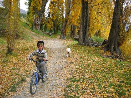 Lake Wanaka Homestay: Walking and Cycling Tracks around the Lake