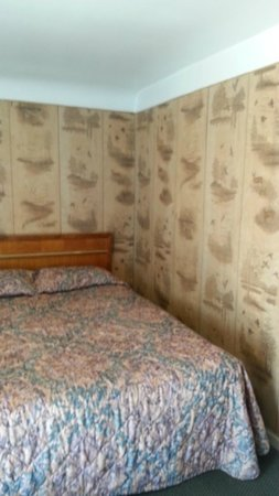 Bay Motel: old wood panneling