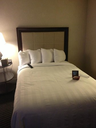 Crowne Plaza Hotel: My bed