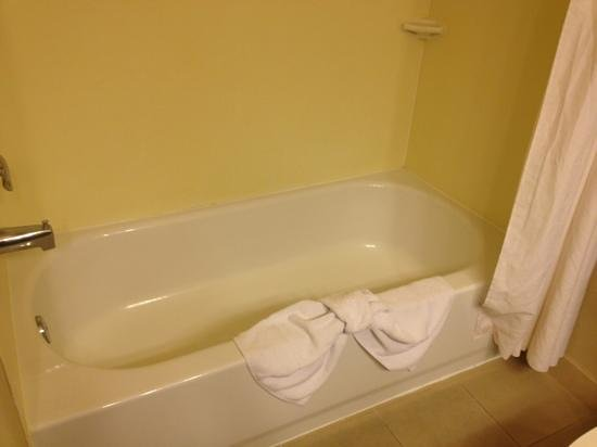 Country Inn & Suites by Radisson, College Station, TX : not so clean shower, poor water pressure