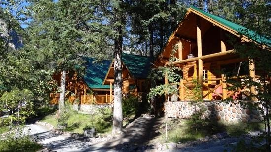 Cathedral Mountain Lodge: vue des challets