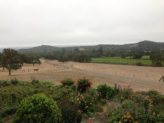 Beltane Ranch: View from Room 2 patio