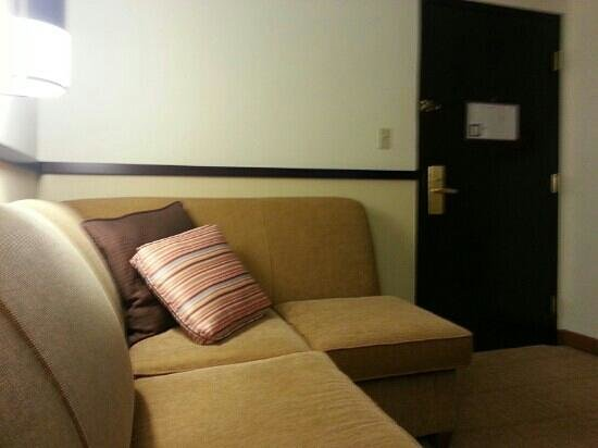 Hyatt Place Atlanta Airport North: couch