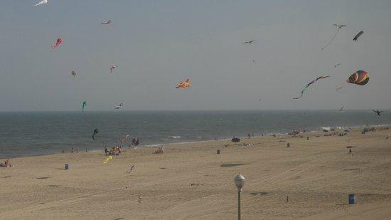 Majestic Hotel: kite loft nearby on boardwalk
