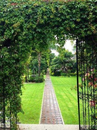 La Buena Vibra Retreat & Spa: jardines de la Buena Vibra