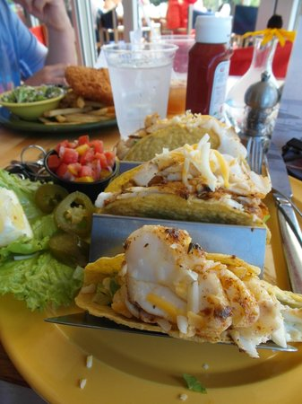 Oliver's at Cozy Harbor: my meal, fish tacos, so yummy!