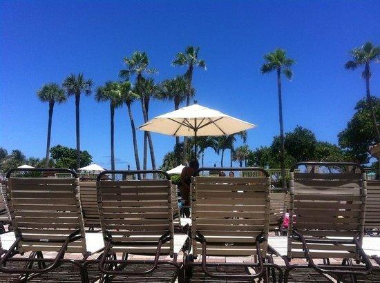 Embassy Suites by Hilton Deerfield Beach - Resort & Spa: Poolside