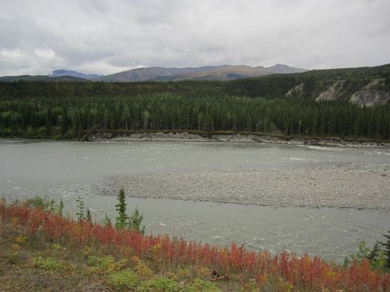 Denali Princess Wilderness Lodge: view from the deck