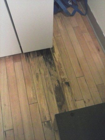 Americas Best Value Mt. Royal Inn: Rotted floor in the kitchenette that smells awful