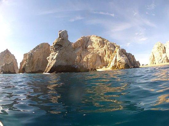 Aqua Activities Los Cabos: Cabo San Lucas  - Surface Dive