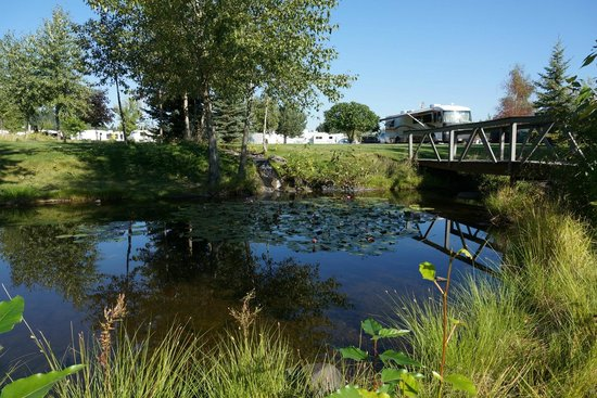 Blackwell Island RV Park: A small water feature.