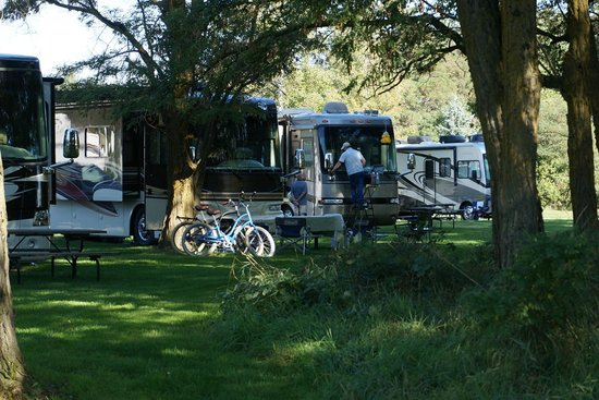 Blackwell Island RV Park : There are a few shaded sites close to the river.