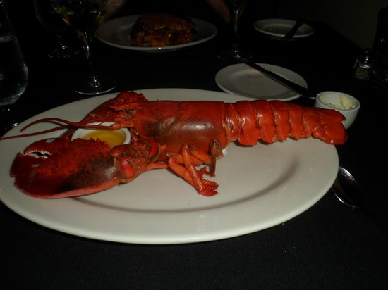 Cape Neddick Inn Restaurant: 1.5 pound staemed lobster-delicious