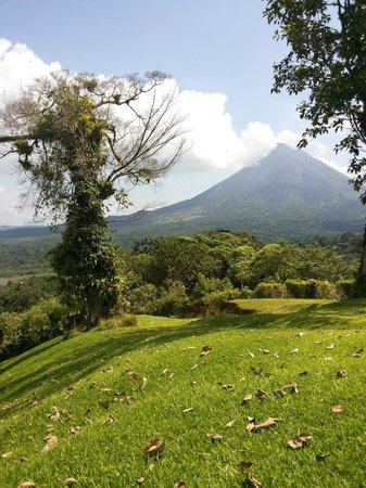 Arenal Tropical Garden: excelente vista