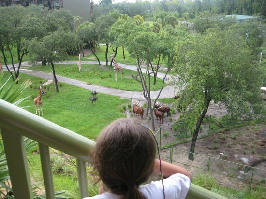 Disney's Animal Kingdom Villas - Kidani Village: Animal Kingdom Lodge / Kidani