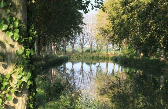 Auberge de L'Arbousier : Nearby along the Canal