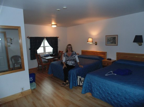 Ocean View Motel & Chalets : Motel Room