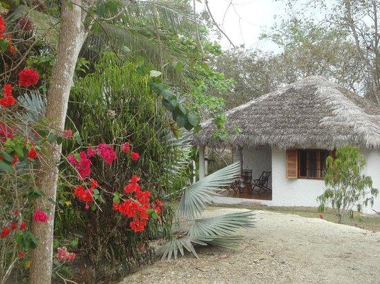 Esmeraldas, Ecuador: Cabaña-Hostereía Cumilinche Club.