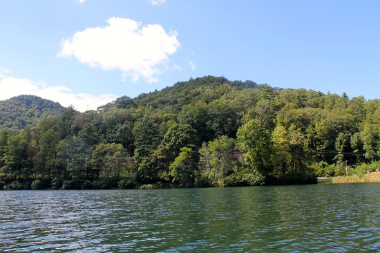 Vogel State Park Campground: From the Lake