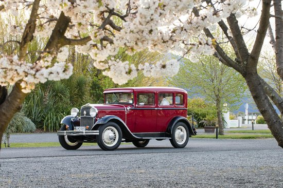 Marlborough Vintners Hotel Heritage Boutique Collection: Beautiful Cherry Blossoms lining the driveway  to the hotel