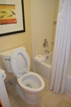 Holiday Inn Baltimore-Inner Harbor: room 205