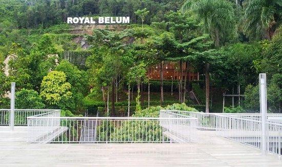 Belum Rainforest Resort: View from the resort