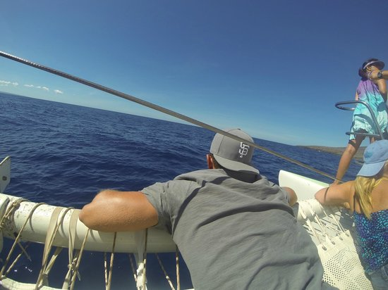 Sail Maui : laying on the front of the boat