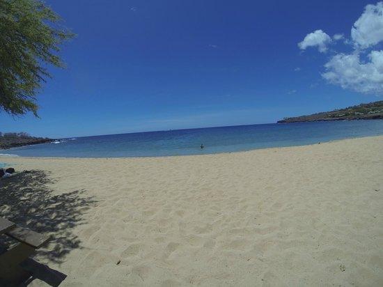 Sail Maui : Beach at Lanai