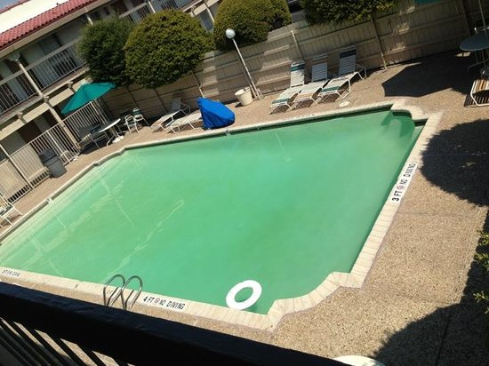 green pool gross picture of motel 6 austin midtown austin tripadvisor. Black Bedroom Furniture Sets. Home Design Ideas