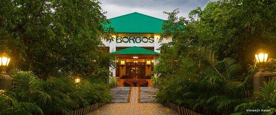 Borgos