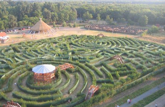 Maze Theme Park Csillagosveny
