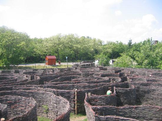 Csillagösvény Útvesztő Öko-élménypark: Braid maze (1,2 km)