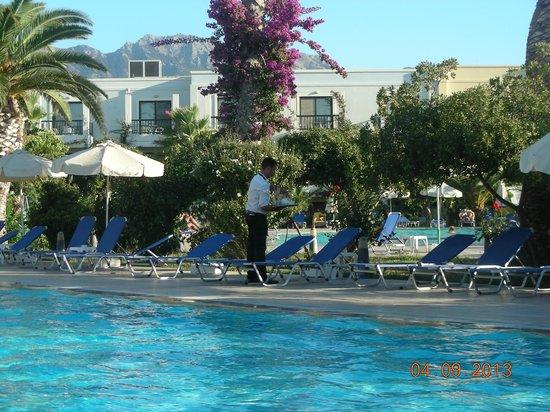 Tigaki Beach Hotel: Pool bereich