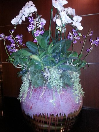 Lobby Floral Arrangement - Picture of Royal Orchid Sheraton