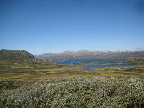 Rodungstol Hoyfjellshotell: vei over mot geilo