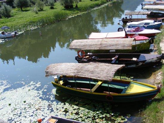 Lake Skadar - Boat Milica