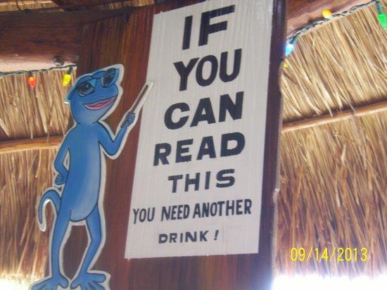 Blue Gecko Cantina: Blue Gecko
